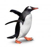 优利康2012年第二季新品Max企鹅上市