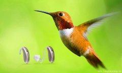 奥迪康MINI BTE蜂鸟宽频迷你助听器